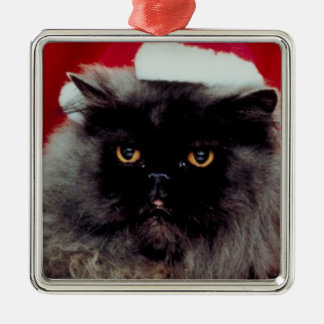 Christmas Holidays Cat Photo Xmas Christmas Ornament