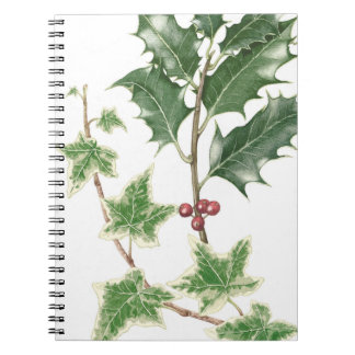 Christmas Holly & Ivy Sprig Botanical Notebook