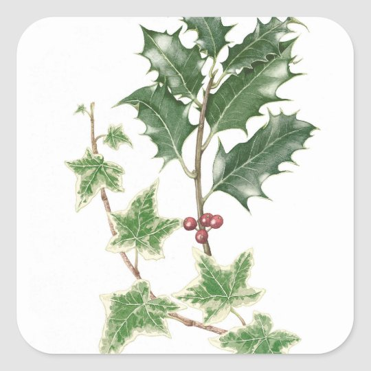 Christmas Holly & Ivy Sprigs Botanical Stickers