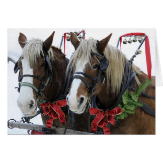 Christmas Horses Cards