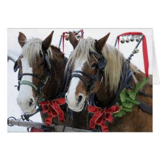 Christmas Horses Cards