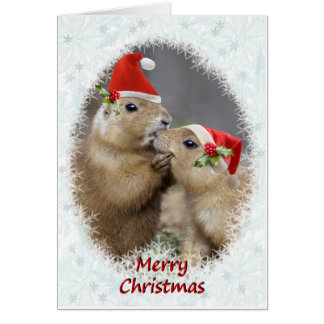 Christmas Kiss Christmas Card