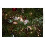 Christmas Kitten Cards