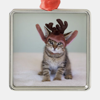 Christmas Kitten Christmas Ornament