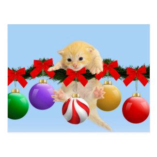 Christmas kitten postcard