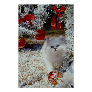 Christmas kitten posters