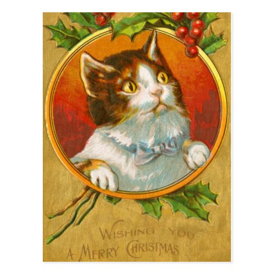 Christmas Kitten with holly berries Postcard