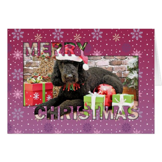 Christmas - LabraDoodle - Miller Card