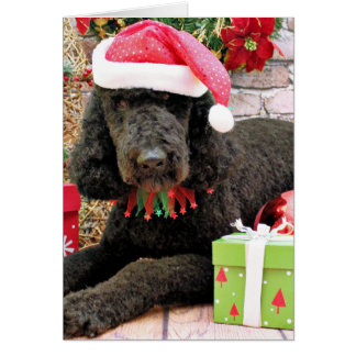 Christmas - LabraDoodle - Miller Greeting Card