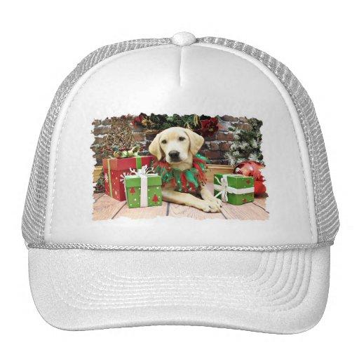 Christmas - Labrador - Buck Trucker Hats