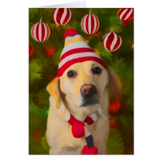 Christmas Labrador card, dog in knit hat Greeting Card