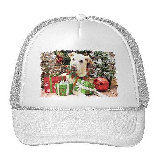 Christmas - Labrador X - Max Mesh Hat