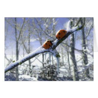Christmas ladybirds greeting card