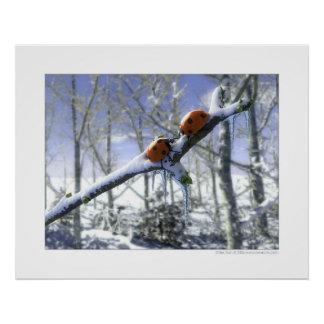 Christmas ladybirds poster
