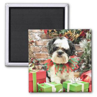 Christmas - Lhasa Apso - Parker Square Magnet