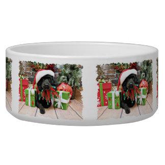 Christmas - LhasaPoo - Buddy