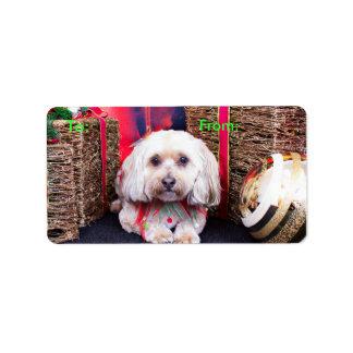 Christmas - LhasaPoo - Gizmo Address Label