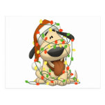 Christmas Lights Funny Puppy Dog Post Card