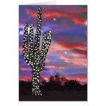 Christmas Lights on Desert Saguaro Cactus