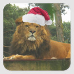 Christmas Lion Wearing Santa Hat Square Stickers