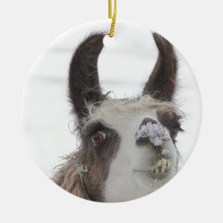 Christmas Llama with Snow on Nose for the Holidays Christmas Ornament