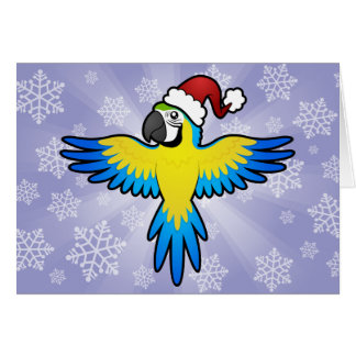 Christmas Macaw / Parrot Greeting Card