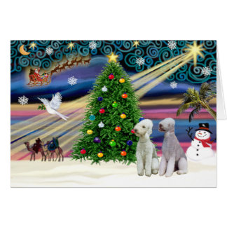 Christmas Magic Bedlington Terriers (two) Card