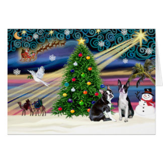 Christmas  Magic-Boston Terrier (2) Card