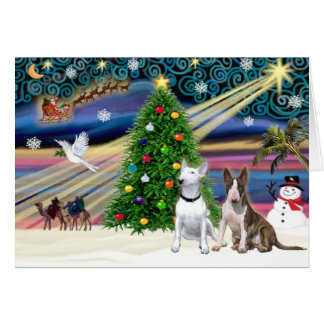 Christmas Magic Bull Terriers (two) Card