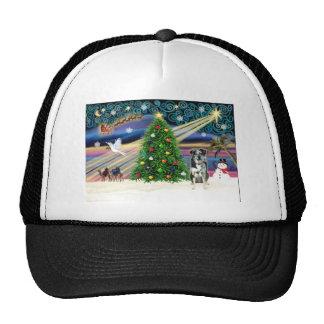 Christmas Magic Catahoula Leopard Dog Hats