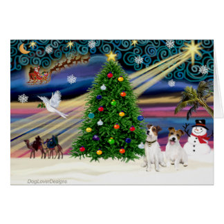 Christmas Magic Jack Russell Terrier (two) Greeting Card
