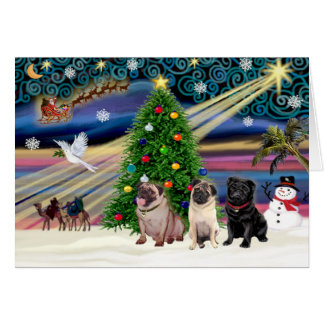 Christmas Magic Pugs (three, 2 fawn, 1 black) Card