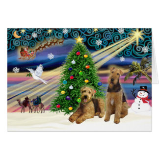 Christmas Magic - Two Airedales Card