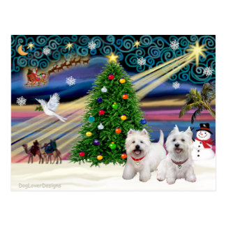 Christmas Magic West Highland Terrier (two) Postcard