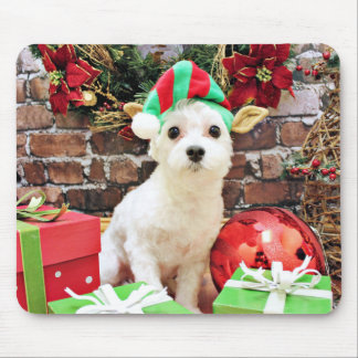Christmas - Maltese - Quinn Mouse Pad