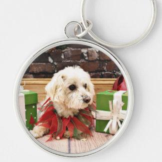 Christmas - MaltiPoo - Baxter Keychain