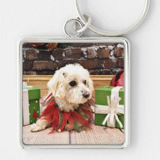 Christmas - MaltiPoo - Baxter Keychains
