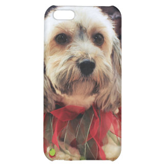 Christmas - Mixed Breed - Ginger Cover For iPhone 5C