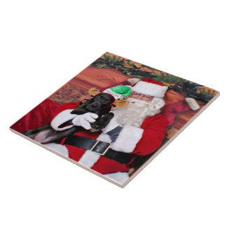 Christmas - Mixed Breed - Trey Ceramic Tile