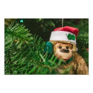 Christmas Monkey Photography Art Photographic Print