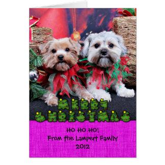 Christmas - Morkie - Jackie and Tabby Greeting Card
