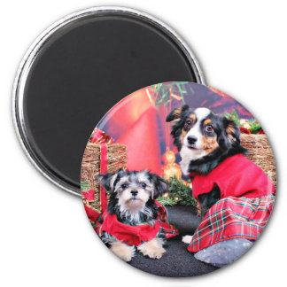 Christmas - Morkie - Lucy and Mini Aussie - Sophie Magnet
