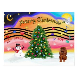 Christmas Music 2 - Cavalier (Ruby) Postcard