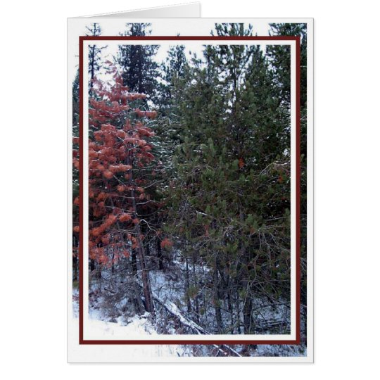 Christmas, New Year, Holiday - Blank Card