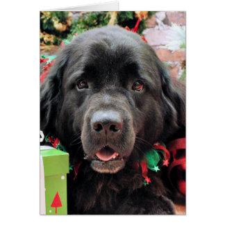 Christmas - Newfoundland - Izzie Greeting Card