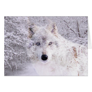 Christmas or winter wolf card
