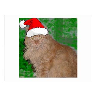 Christmas Orange Tabby Kitty Cat Postcards