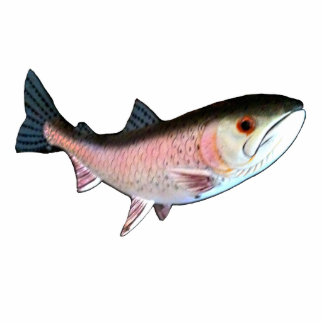 Christmas Ornament Fish Salmon Pink Photo Sculpture Decoration