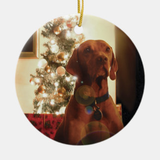 Christmas Ornament (Henry)