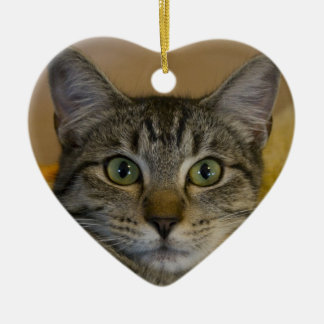 Christmas Ornament: Kitty's 1st Xmas Christmas Ornament